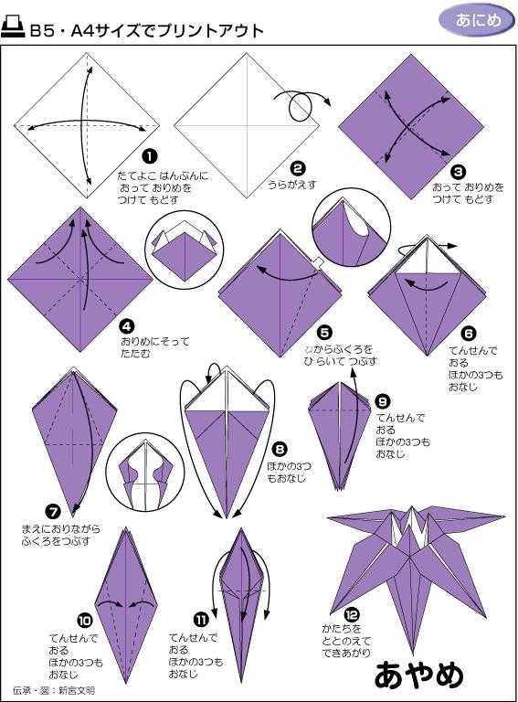 > 技术教程 >     好辛苦找到的折纸大全(图解)   我也想折出这么可爱