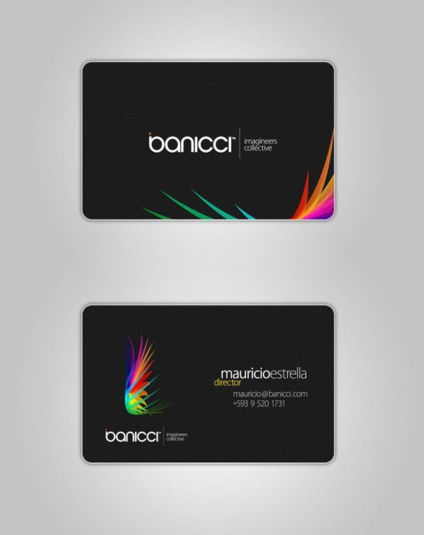 banicci_Logo_and_Business_Card_by_manicho